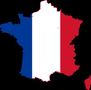 Löwchen räknas som en Fransk ras