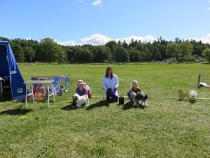 Barn med hund - kopia